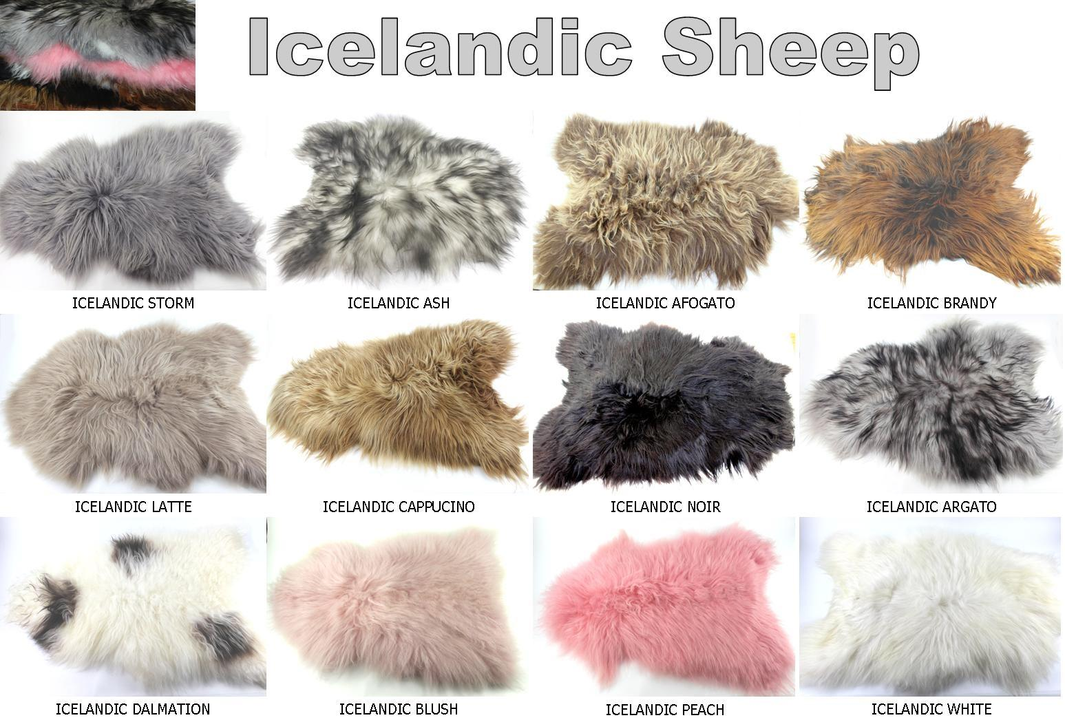 Icelandic Sheep skins