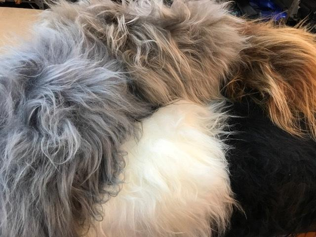 Icelandic sheep cushion 40cmsq