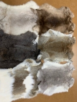 Rabbit Skins - Click for more info