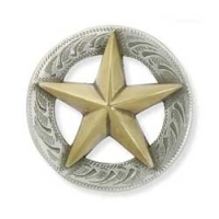 Texas Star 3D concho - Click for more info