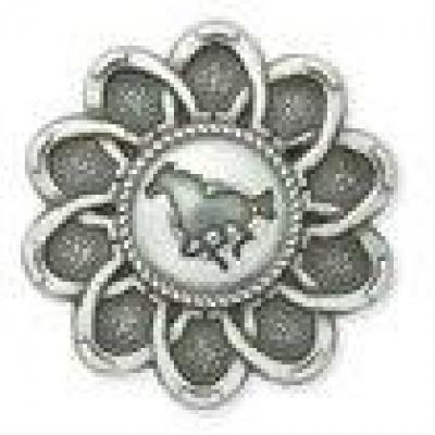 Yahoo Horseshoe Concho - Click for more info